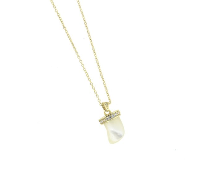 Envious Gems Mother of Pearl Horn CZ Gold Vermeil Necklace